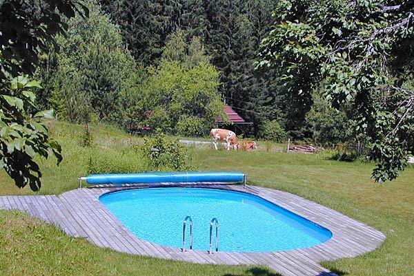 Hotel in den salzburger bergen mit pool und sauna for Swimmingpool angebote